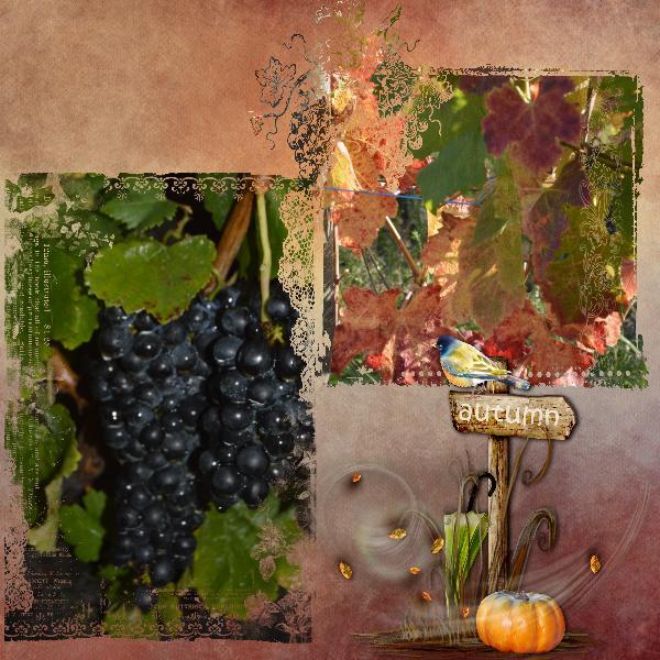 couleurs_d_automne_11_16