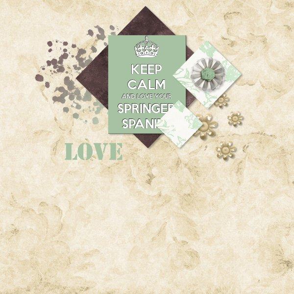 Love springer spaniel