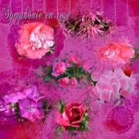 couleur_rose_10_11_15.jpg