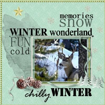 Dec.2016 - lo 3 .Winter wonderland Deer