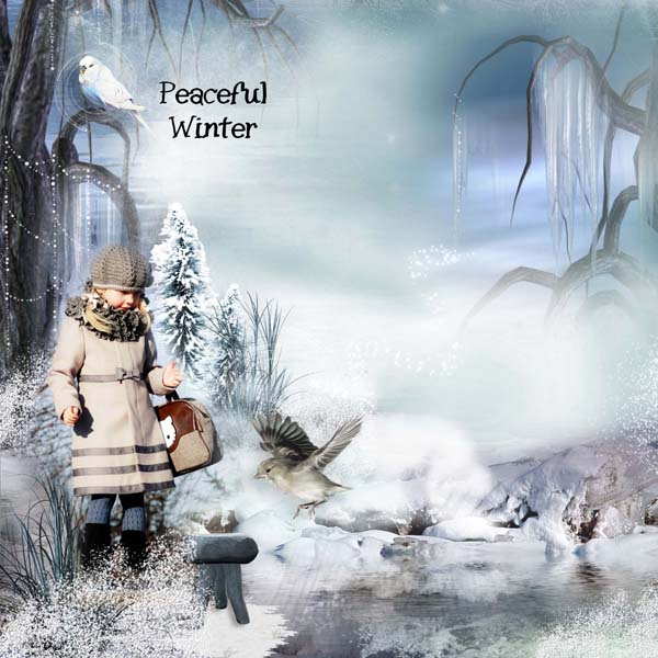Peacefull Winter