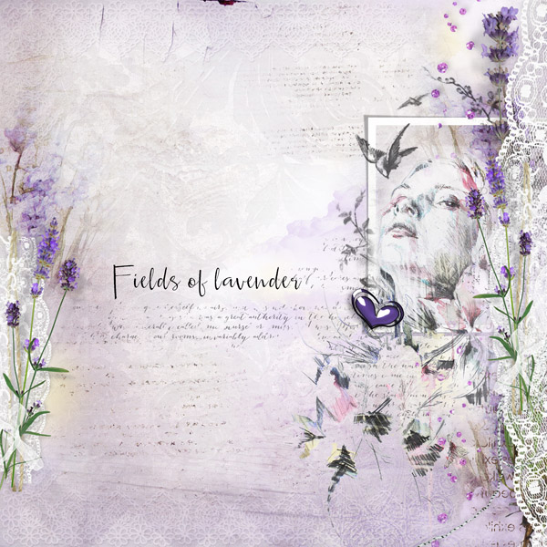 Lace and Lavender
