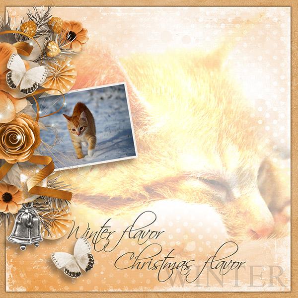 moos_winterflavor_pixabay_600
