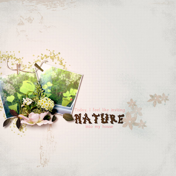 Nature into my House