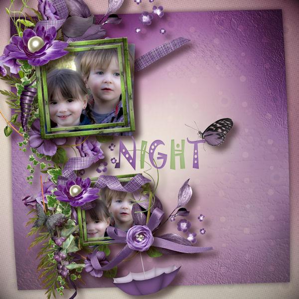 night_butterfly