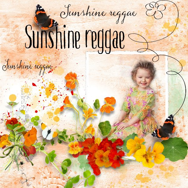 SUNSHINE REGGAE II