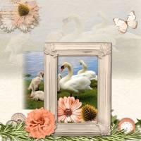 AS_Springtime1.jpg