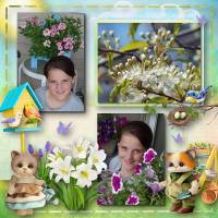 CT_Bee_Creation_Spring_is_Coming_-_600.jpg