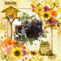 CT_Louise_L_Projects_Colors_Autumn_-_600_1.jpg