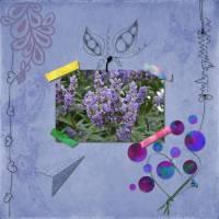HSA_Create_Art2_2.jpg