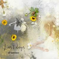 Last_days_of_summer.jpg