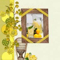 Lemon_Taste_PRV_500x500_Mariscrap_by_Lana_2015.jpg
