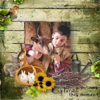 LouiseL_ALaferme_24_09_17_pixa_2.jpg