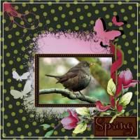March_2017_-_lo_1_-_Spring.jpg