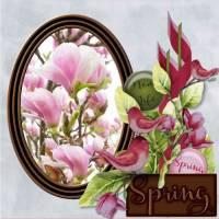 March_2017_-_lo_2_-_Spring.jpg
