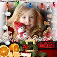 Must_arrive_for_Christmas_72.jpg