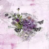 SDE_LavenderForMom_CollectionBiggie1.jpg