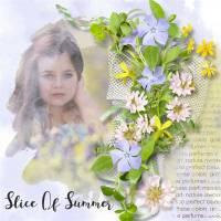 Slice_of_summer1.jpg