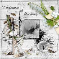 Tenderness_of_blooming_72.jpg