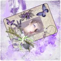 VC_LavenderSummer_2.jpg