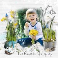 VMD_Spring_Rhapsodyinblue_Jiru_ka-web.jpg