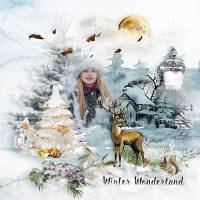 WinterWonderland3.jpg