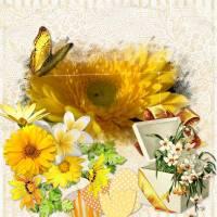 jaune_04_16.jpg