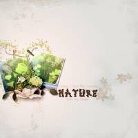 natureintomyhouse.jpg