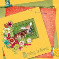 spring-is-here-2-web.jpg