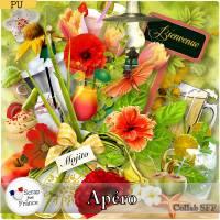 collabSFF_apero_pvSFF.jpg