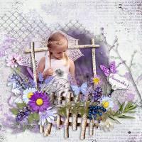 LavenderFields1.jpg