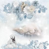 Simplette_PolarBear_pixabay-web.jpg