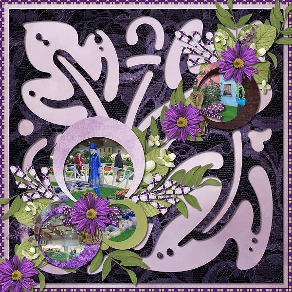 Roman Lavender
