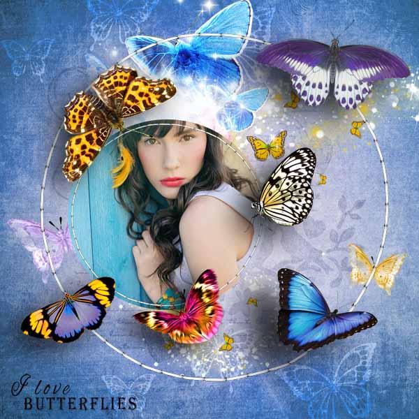 Aux pays des papillons