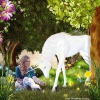 Jardin_Enchante1.jpg