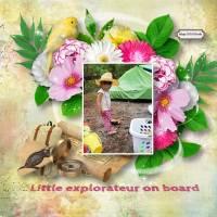 Traveler_Maya_Explorer.jpg