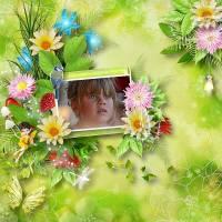 the_world_of_fairies_.jpg