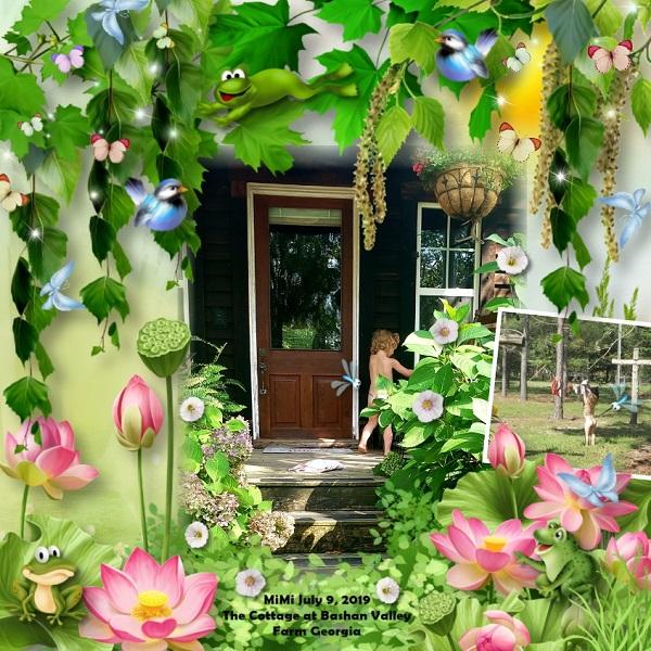 Frog MiMi Cottage
