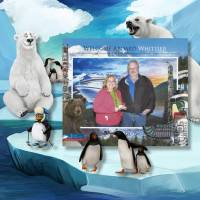 Alaska_Whittier_boat.jpg