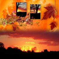 CT_Bee_Creation_Autumn_-_600.jpg