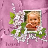 Vanilla_LilacSplendor.jpg