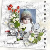 memoryzone1.jpg