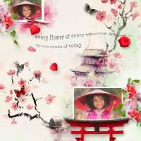 template_HSA_chinese.jpg