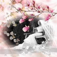 Shabby_Sweet600x600.jpg