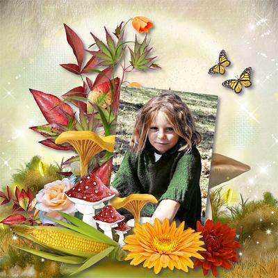 Bonjour automne