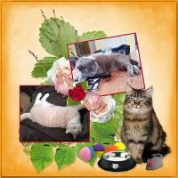 Cat_princesse_de_love_crea_opt.jpg