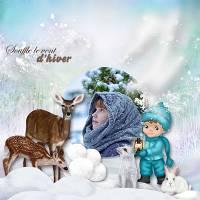 Winter_wonderland_de_louise_2_opt.jpg