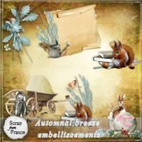 maguette_automnal_embellissements.jpg
