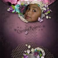 Cherished_Memories.jpg