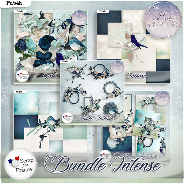 Intense Bundle (PU/S4H) by Bee Creation